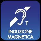 INDUZIONE MAGNETICA